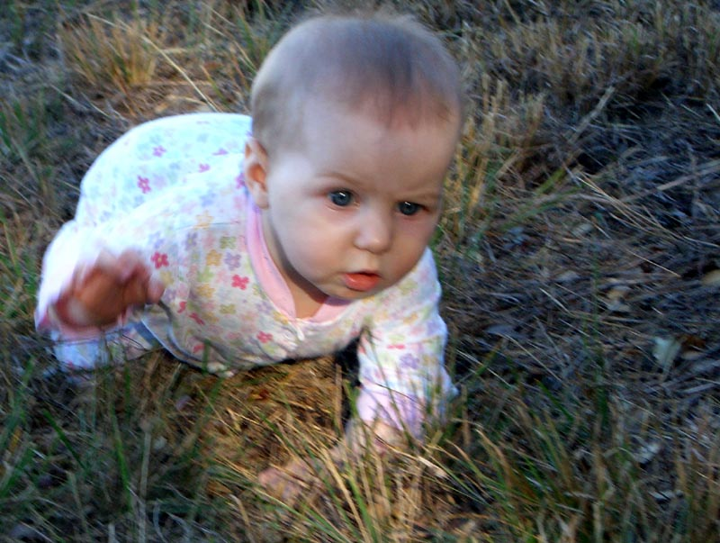 In the grass, hand raised; December 2005