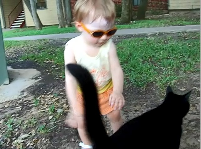 E tries to grab at a passing cat