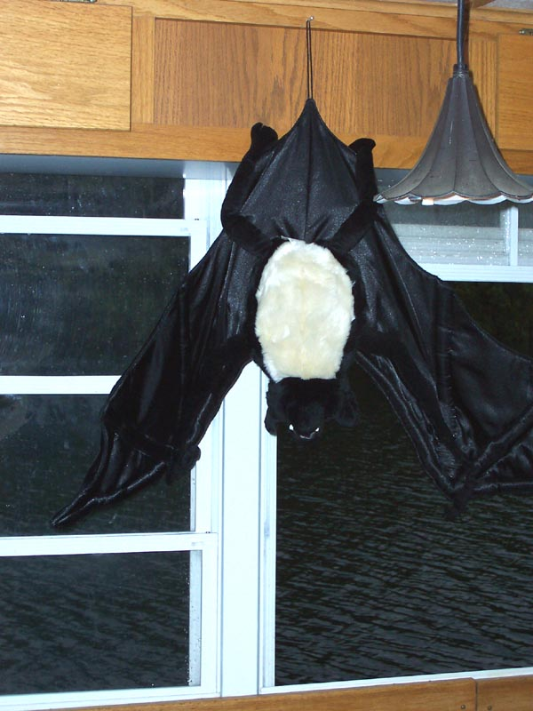 picture_020 A stuffed toy bat inside a cruise boat, September 2006