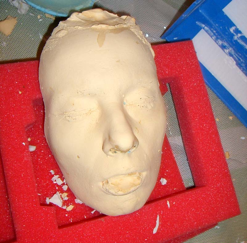 Finished cast of my face